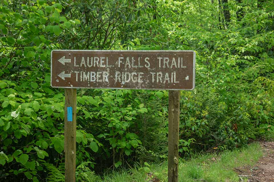 The Trail Sign at Big Laurel Falls