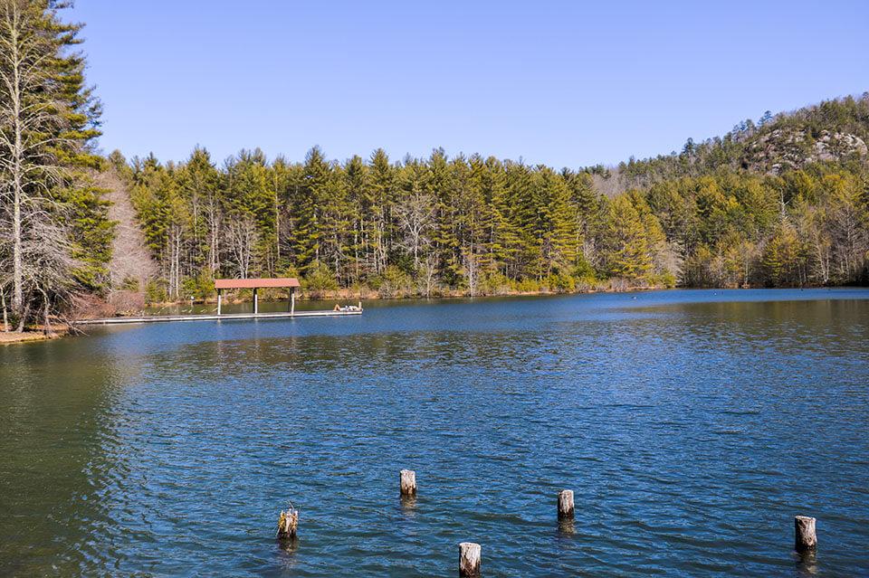Our Favorite is Lake Dense