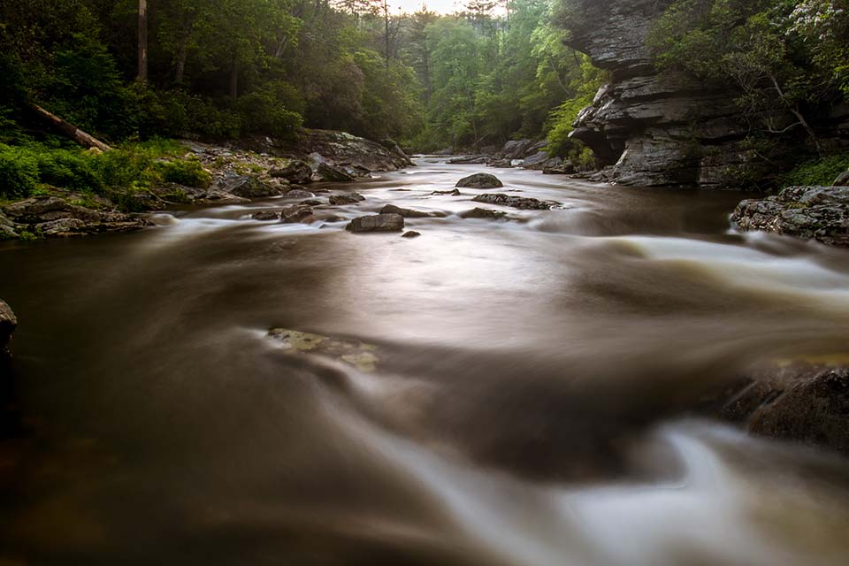 Looking Up the Linville River
