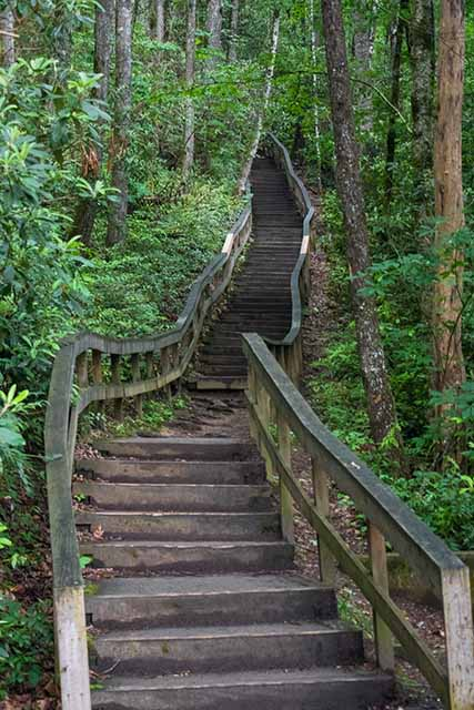 The many stairs leading up to Mingo Falls