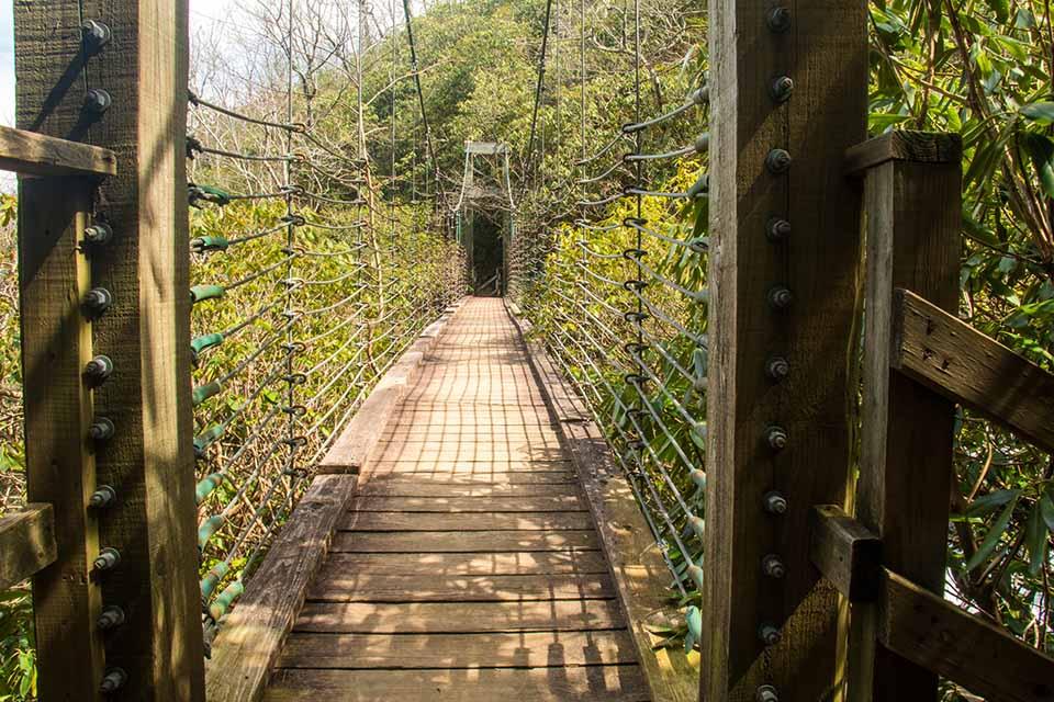 Raven Cliff Falls Suspension Bridge