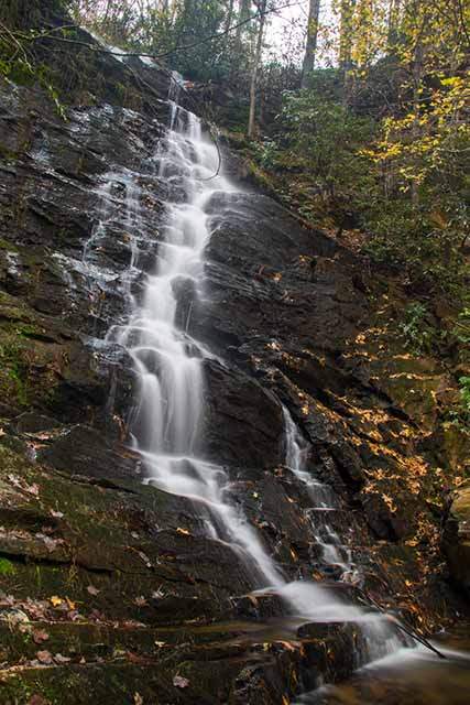 30ft Reedy Branch Falls