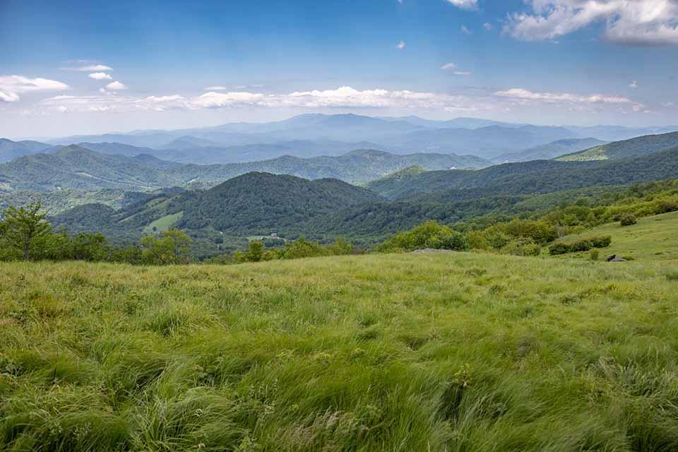 Roan Mountain Grassy Balds