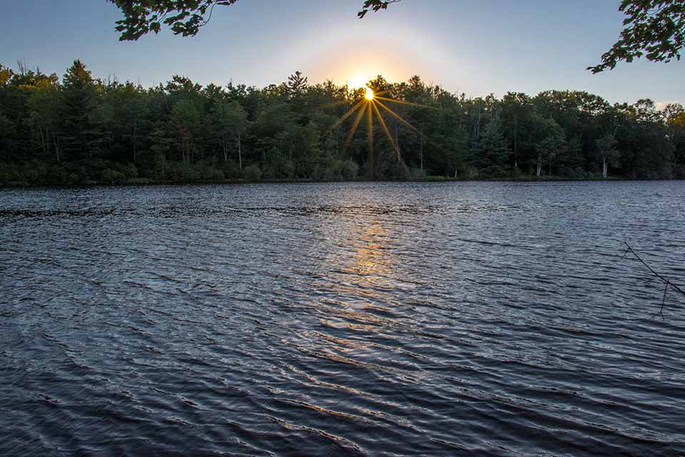 A Sunburst Through the Trees at Price Lake