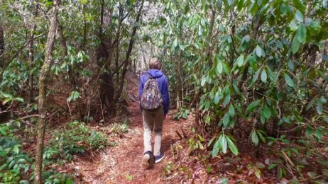 What Hiking Trails are Near Me?