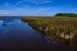 Currituck Banks Reserve