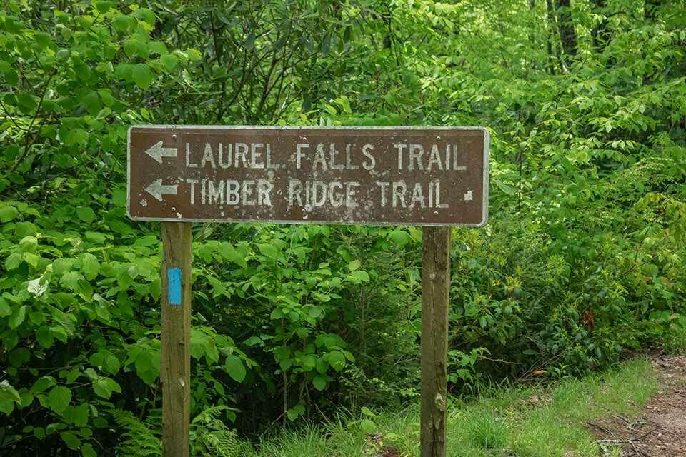 Big Laurel Falls Trail Sign