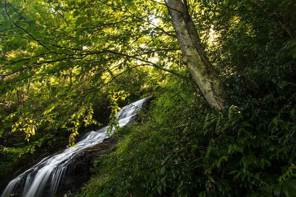 Cascade Falls Lower Overlook