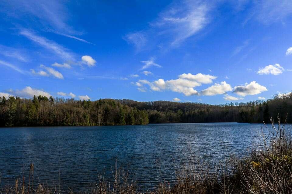 DuPont Lake Julia