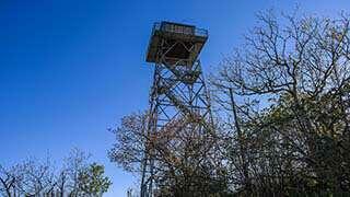 Fryingpan Lookout Tower