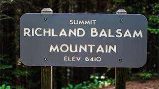 Richland Balsam