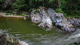 Laurel River Trail