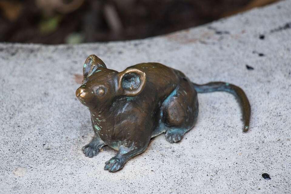Mice on Main Marcley