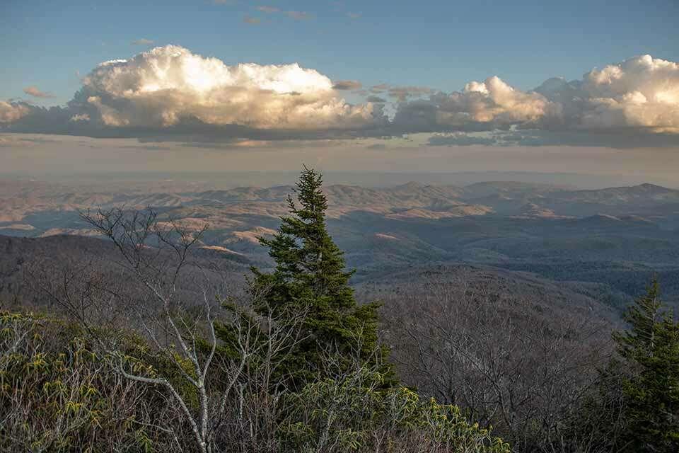 Rough Ridge View