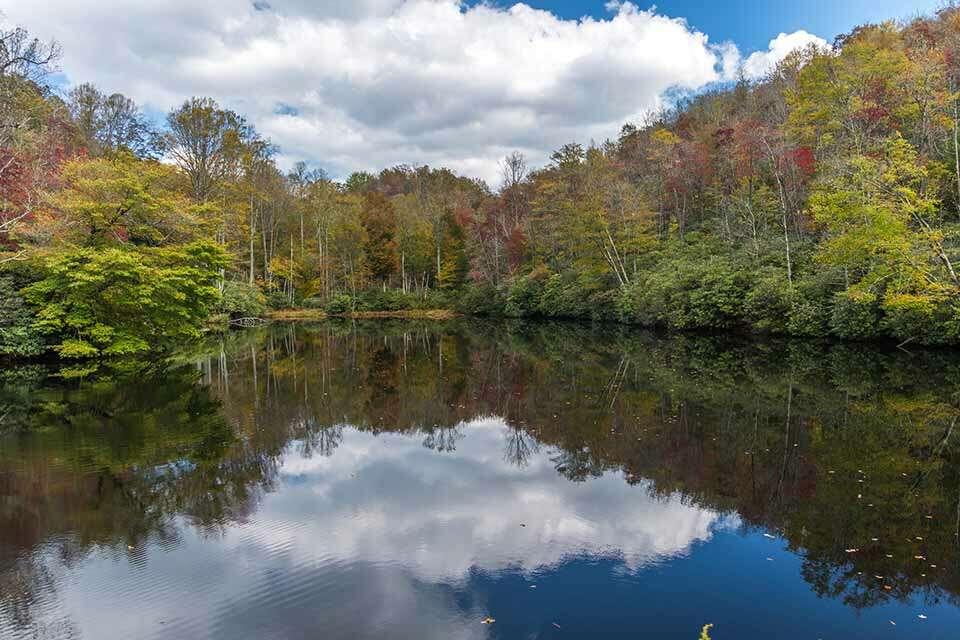 Sims Lake