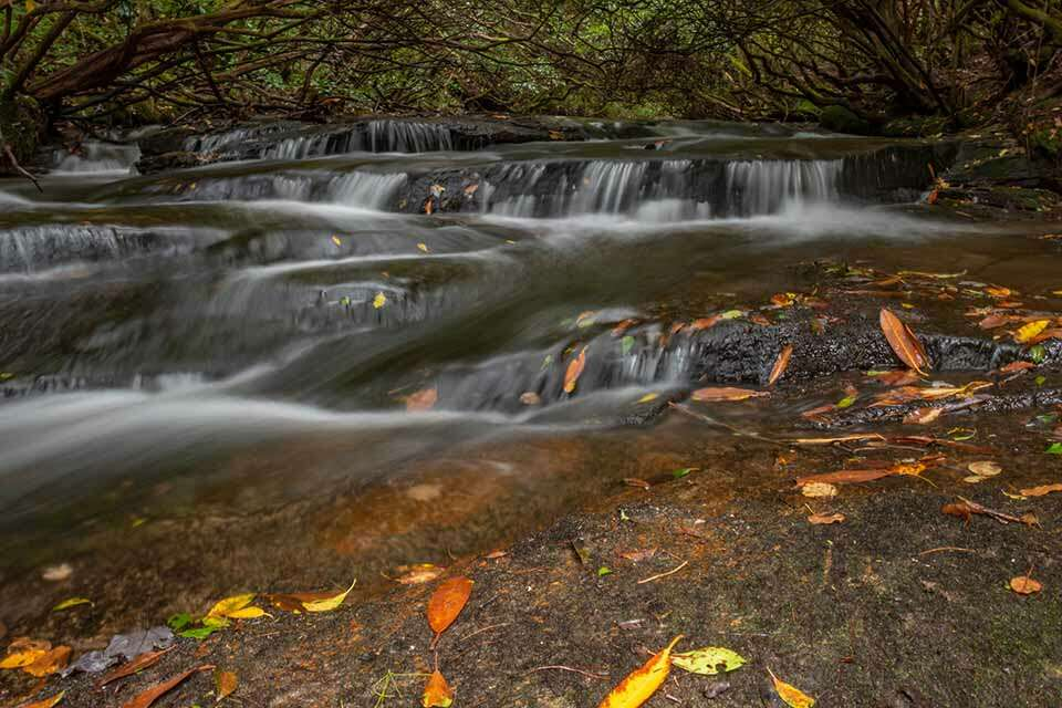 Upstream-Graveley-Falls